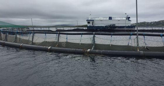 Covers for the Aquaculture industry